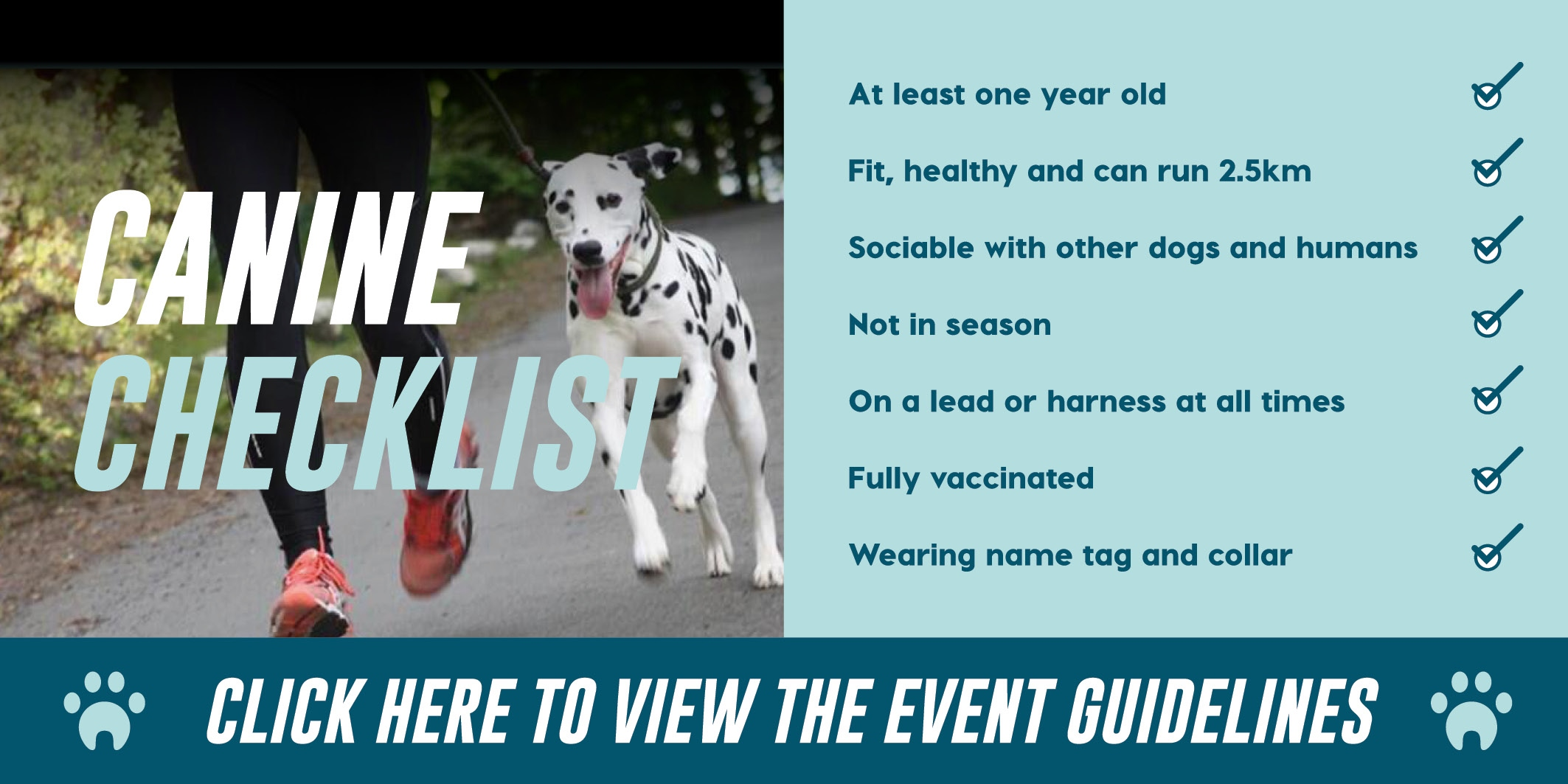 Canine checklist: At least one year old, Fit healthy and can run 2.5km, Sociable with other dogs, Not in season, On a lead or harness at all times, Fully vaccinated, Wearing name tag and collar.